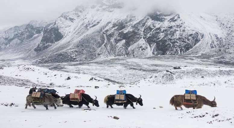 Himalayan Adventure Video